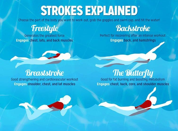 Check out five significant types of swimming styles!